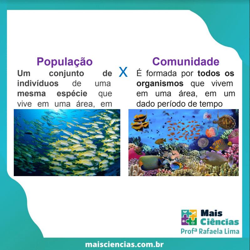 População e Comunidade